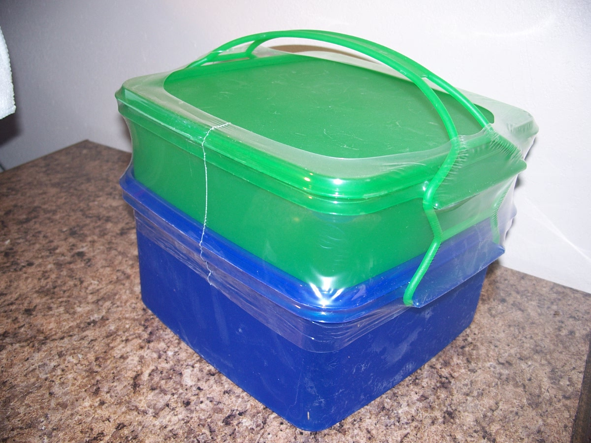 Plastic Food Carrier(blue,green)