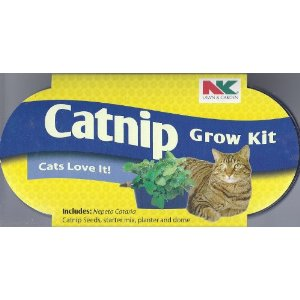 Plantation Products Catnip Grow Kit