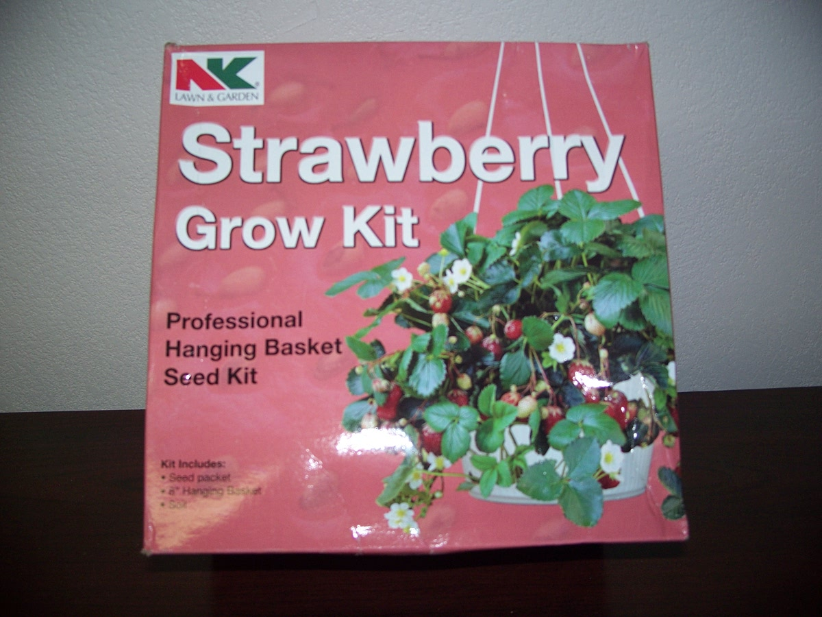 Strawberry Grow Kit