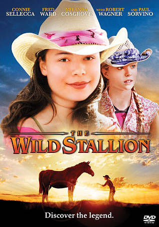 The Wild Stallion Discover The Legend
